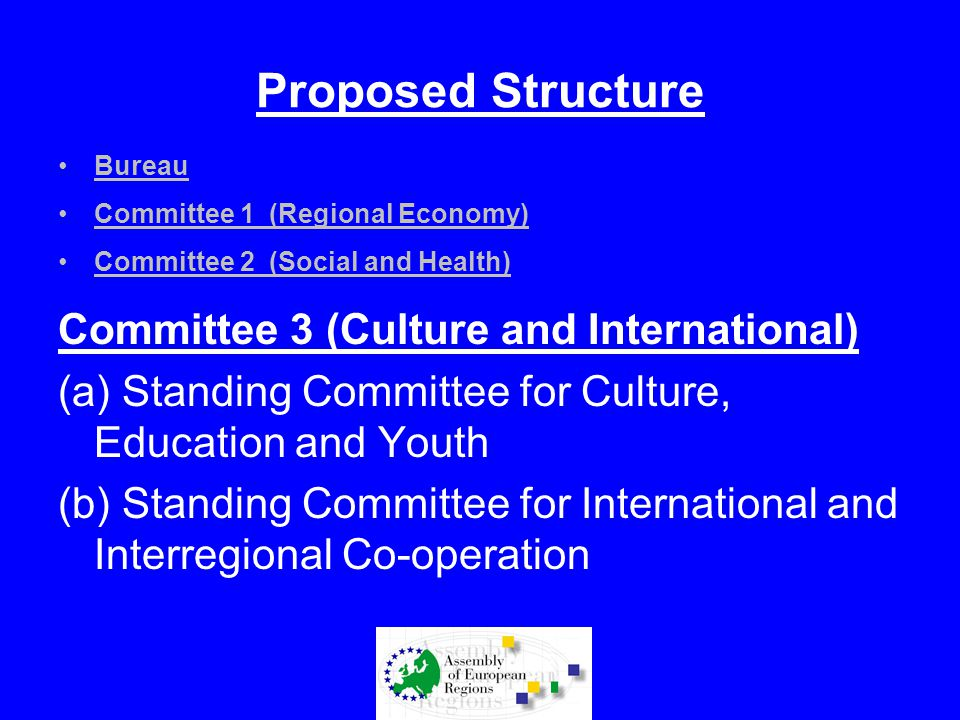 Proposed Structure Bureau Committee 1 (Regional Economy) Committee 2 (Social and Health) Committee 3 (Culture and International) (a) Standing Committe