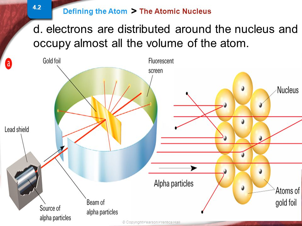 Slide 6 of 18 © Copyright Pearson Prentice Hall Defining the Atom > The Atomic Nucleus 4.2 d.