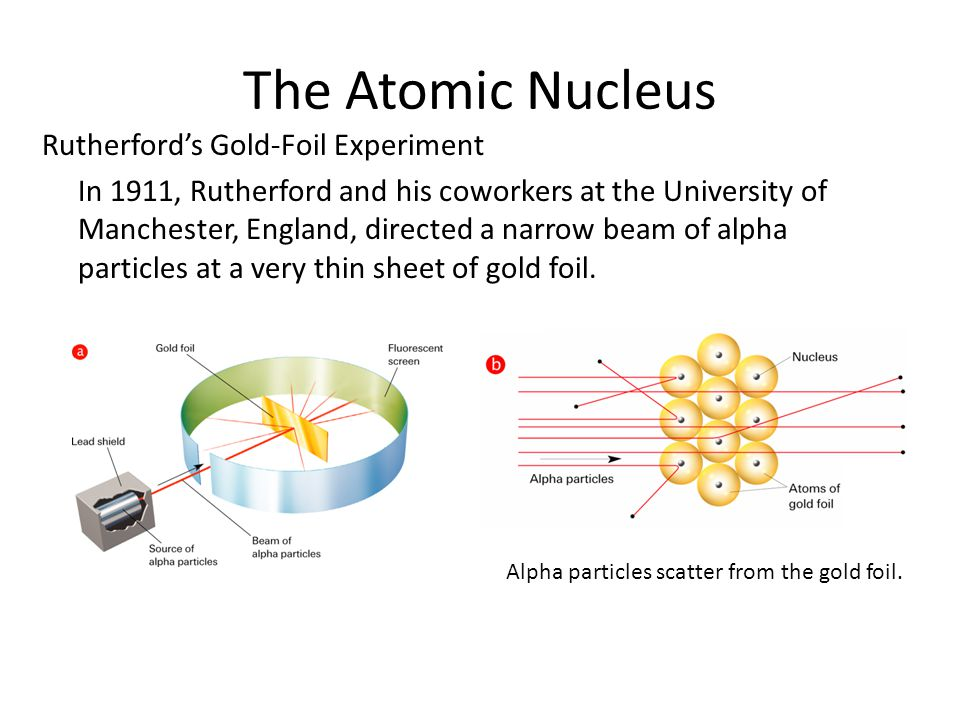 The Atomic Nucleus Rutherford's Gold-Foil Experiment In 1911, Rutherford and his coworkers at the University of Manchester, England, directed a narrow