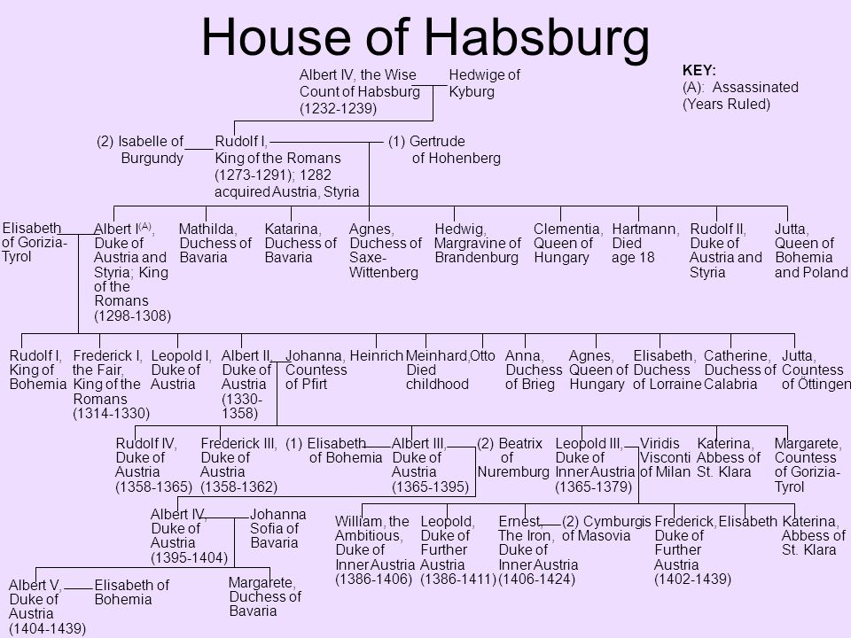 House of Habsburg Albert V, Duke of Austria (1404-1439); King of the Romans (1438-1439) Elisabeth of Bohemia Anne, Duchess of Saxony Elisabeth, Queen of Poland Ladislays, the Posthumous, Duke of Austria (1440-1457) Ernst, The Iron, Duke of Inner Austria (1406-1424) (2) Cymburgis of Masovia Margarete, Electress of Saxony Albert VI, Duke of Inner Austria (1424-1463) Alexander and Rudolf, Died childhood Katarina, Margravine of Baden- Baden LeopoldAnnaErnstFrederick V, Duke of Austria (1457-1493); III, HRE (1452-1493) Eleanor of Portugal Christopher, Archduke of Austria, Died infancy Maximilian I, Holy Roman Emperor (1493-1519) Helena, Archduchess of Austria, Died infancy Kunigunde, Duchess of Bavaria John, Archduke of Austria, Died infancy Albertinian Line Leopoldian Line Mary of Burgundy Philip, the Handsome of Burgundy Margaret of Austria Francis, Died infancy Joanna of Castille Eleanor, Queen of Portugal and France Charles V, Holy Roman Emperor (1519-1558) Isabella, Queen of Denmark Ferdinand I, Holy Roman Emperor (1558-1564) Mary, Queen of Hungary and Bohemia Catherine, Queen of Portugal Anna of Bohemia and Austria Maria, Duchess of Julich- Cleves-Berg Catherine, Queen of Poland Eleanora, Duchess of Mantua Barbara, Duchess of Ferrara Charles II, Archduke of Austria Johann & Ursula, Died in childhood Magdalena, Margaret, & Helen, nuns Johanna, Grand Duchess of Tuscany Elisabeth, Queen of Poland Anna, Duchess of Bavaria Ferdinand II, Archduke of Austria Maximilian II, Holy Roman Emperor (1564-1576) See Spanish Royal Family Trees Anna, Queen of Spain Rudolf II, Holy Roman Emperor (1576-1612) Ernest, Archduke of Austria Elizabeth, Queen of France Matthias, Holy Roman Emperor (1612-1619) m.