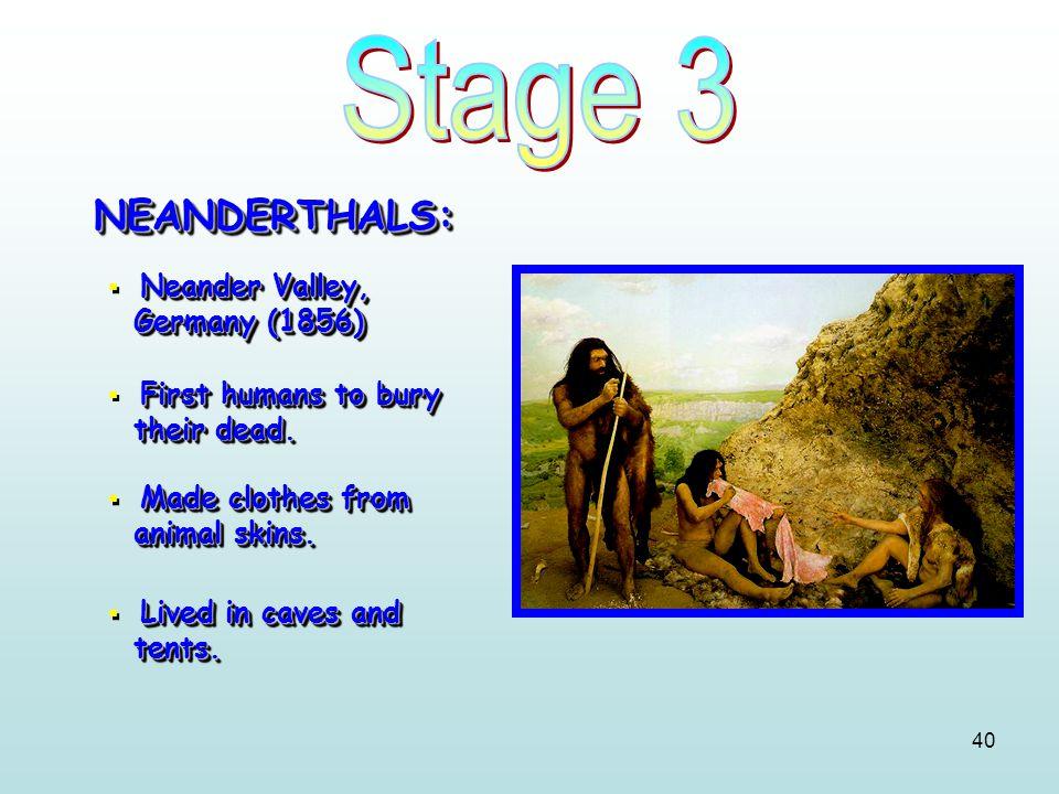 40 NEANDERTHALS:NEANDERTHALS: Neander Valley, Germany (1856)  Neander Valley, Germany (1856) First humans to bury their dead.