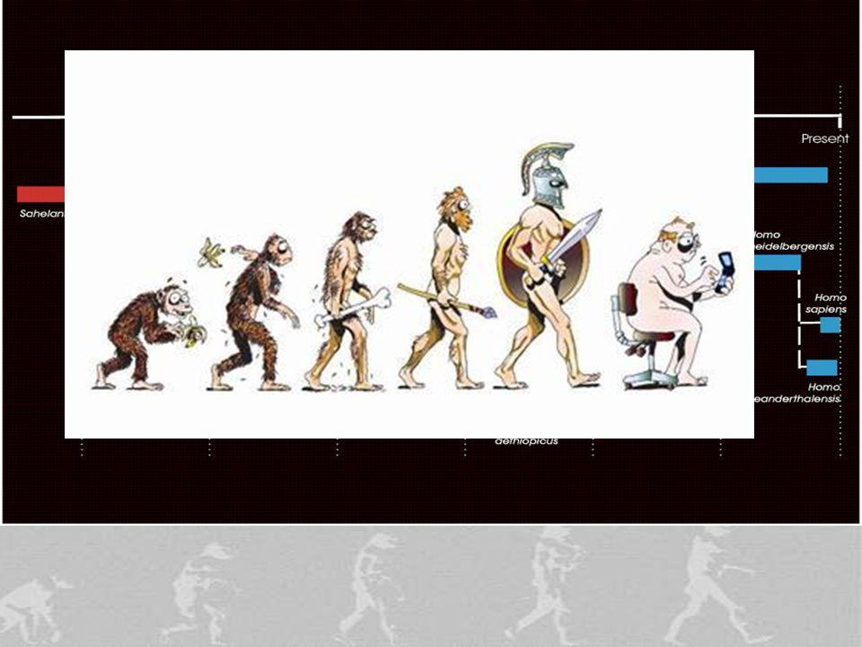 50 Human Origins .
