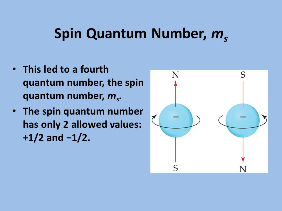 Spin Quantum Number, m s This led to a fourth quantum number, the spin quantum number, m s.
