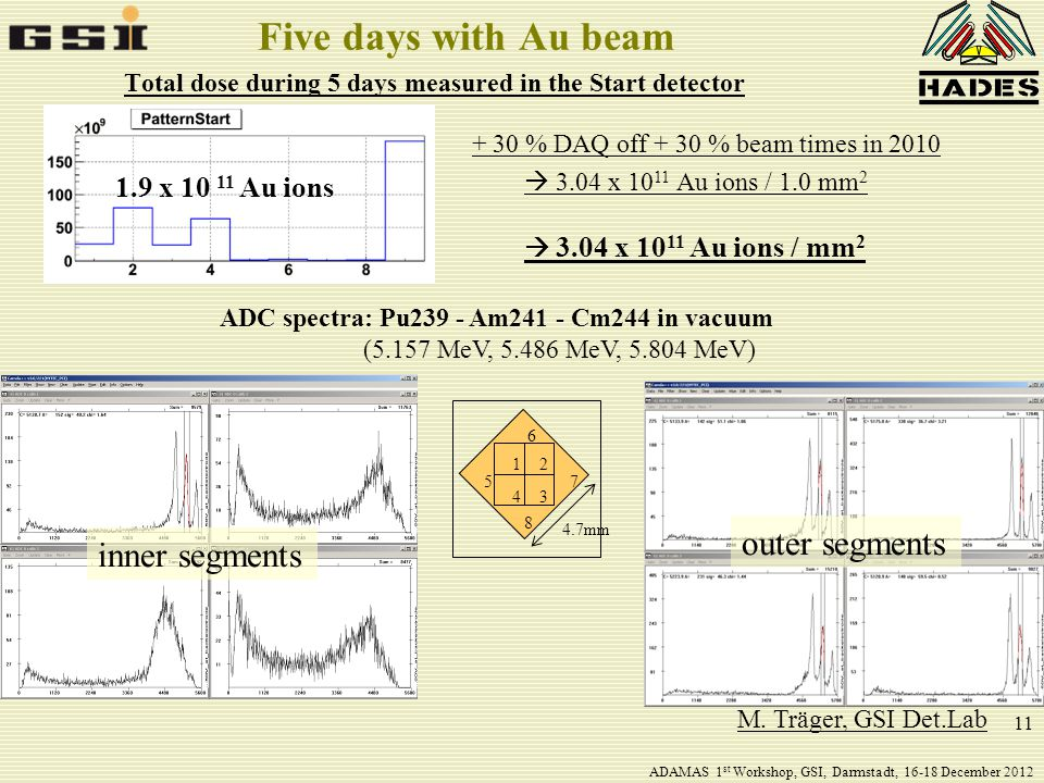 11 Five days with Au beam Total dose during 5 days measured in the Start detector 1.9 x 10 11 Au ions + 30 % DAQ off + 30 % beam times in 2010  3.04