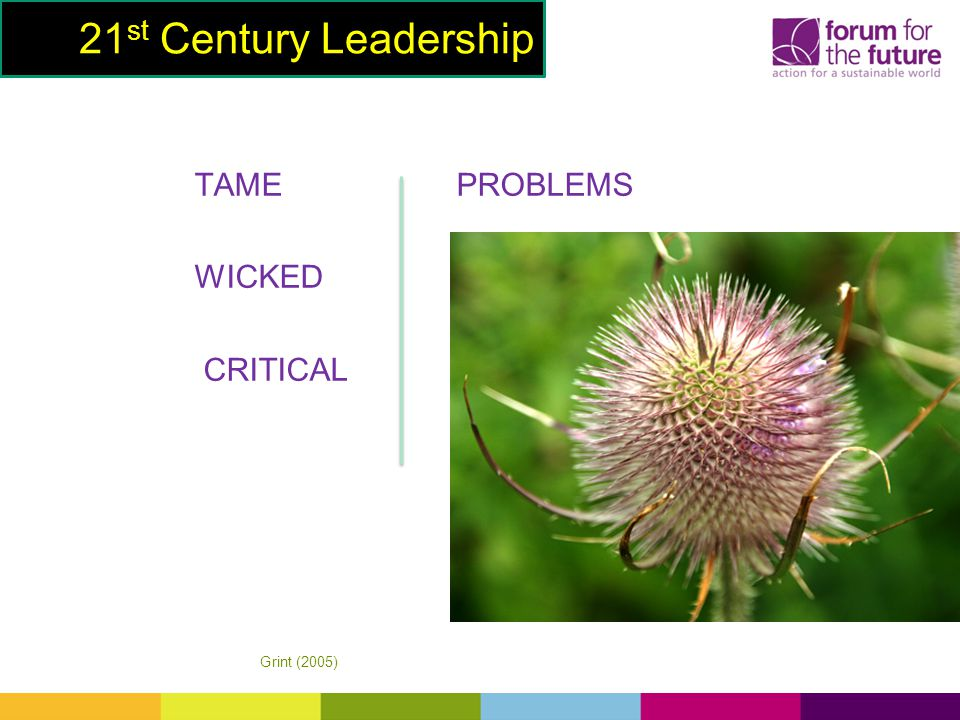 TAME PROBLEMS WICKED CRITICAL 21 st Century Leadership Grint (2005)