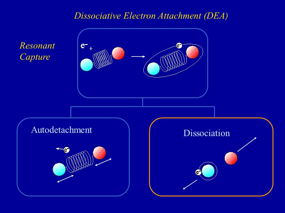Dissociation Autodetachment Resonant Capture Dissociative Electron Attachment (DEA )