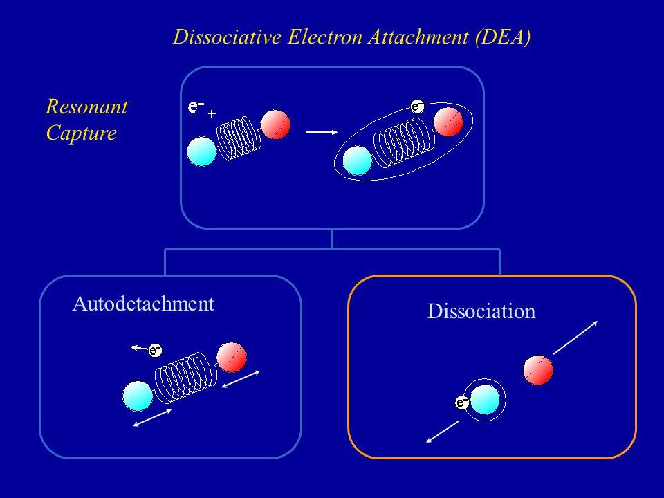 e - (0 - 10 eV) M-M- X-X- R M-M- e-e- e-e- Isolated molecules (effusive molecular beam) Molecular clusters (supersonic molecular beam) Adsorbed and condensed molecules (UHV) 20 K