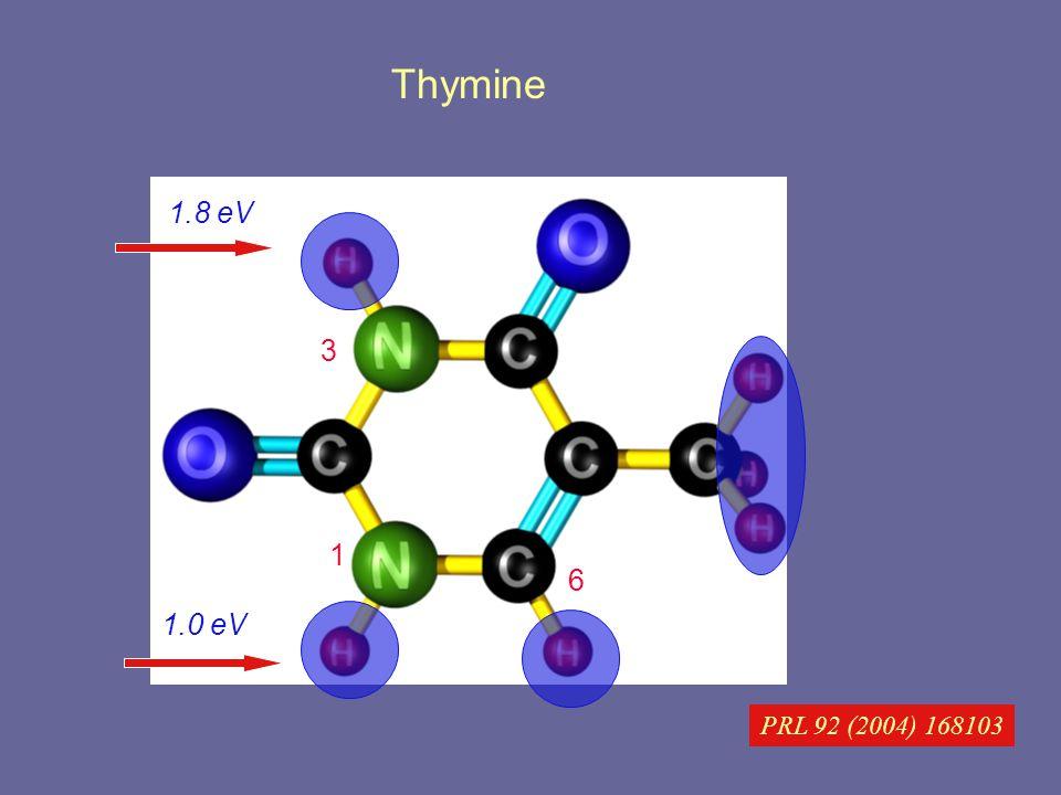 Thymine PRL 92 (2004) 168103 1 3 6 1.0 eV 1.8 eV