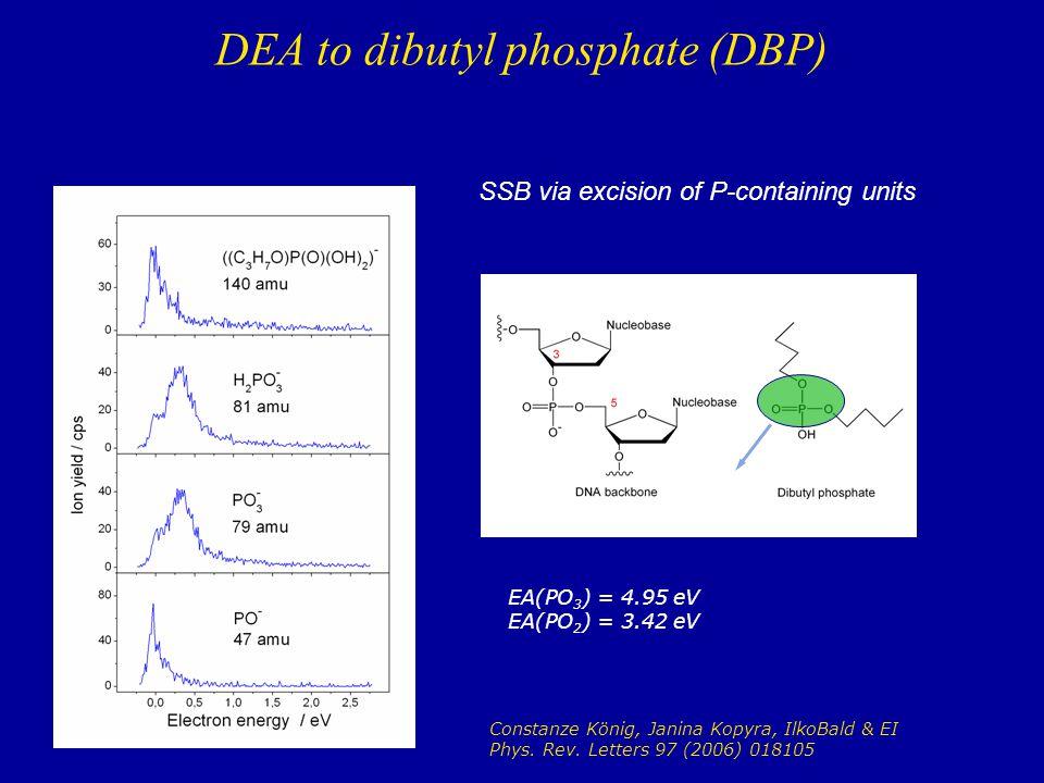 DEA to dibutyl phosphate (DBP) EA(PO 3 ) = 4.95 eV EA(PO 2 ) = 3.42 eV Constanze König, Janina Kopyra, IlkoBald & EI Phys.