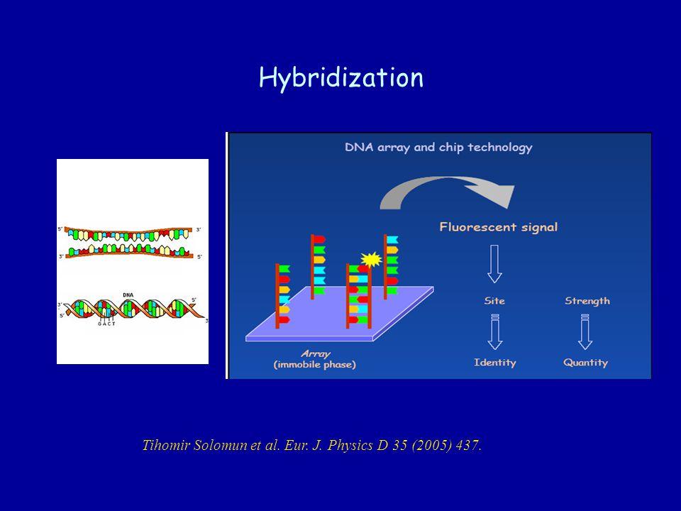 Hybridization Tihomir Solomun et al. Eur. J. Physics D 35 (2005) 437.