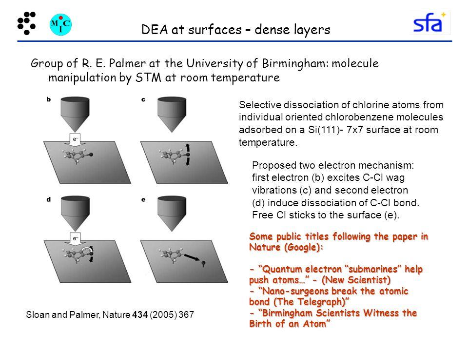 DEA at surfaces – dense layers Group of R.E.