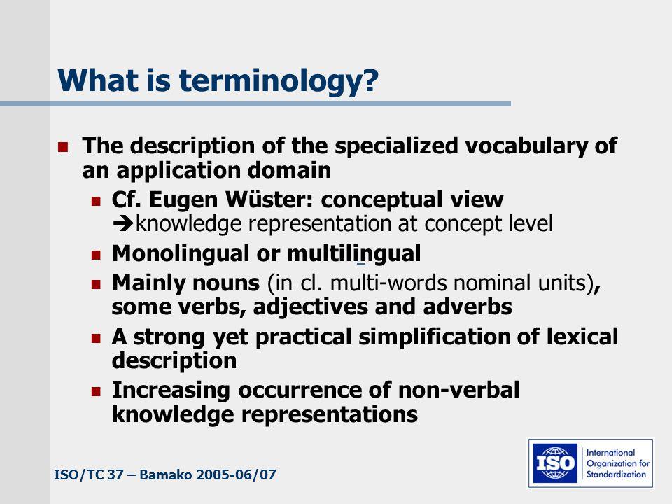 ISO/TC 37 – Bamako 2005-06/07