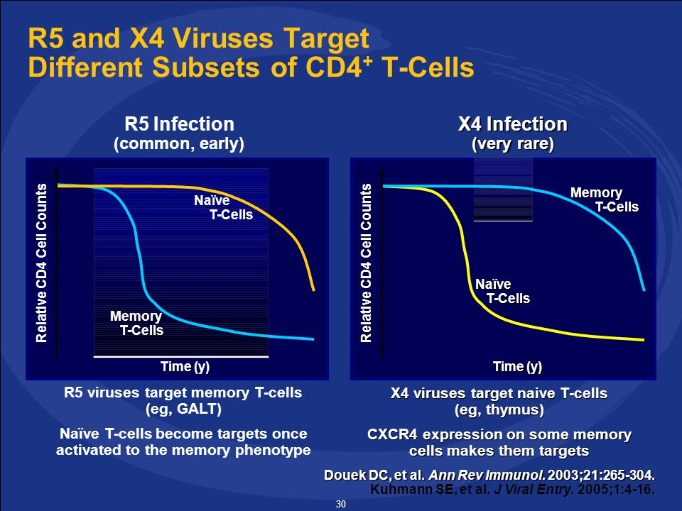 30 R5 and X4 Viruses Target Different Subsets of CD4 + T-Cells Douek DC, et al.