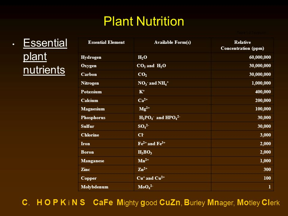 Plant Nutrition Essential plant nutrients Essential ElementAvailable Form(s)Relative Concentration (ppm) Hydrogen H 2 O60,000,000 OxygenCO 2 and H 2 O