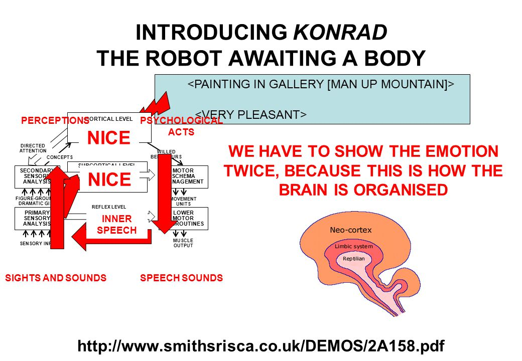 WE HAVE TO SHOW THE EMOTION TWICE, BECAUSE THIS IS HOW THE BRAIN IS ORGANISED INTRODUCING KONRAD THE ROBOT AWAITING A BODY http://www.smithsrisca.co.uk/DEMOS/2A158.pdf SECONDARY SENSORY ANALYSIS PRIMARY SENSORY ANALYSIS MOTOR SCHEMA MANAGEMENT LOWER MOTOR SUBROUTINES REFLEX LEVEL FIGURE-GROUND / DRAMATIC GIST SENSORY INPUT MOVEMENT UNITS MUSCLE OUTPUT DIRECTED ATTENTION WILLED BEHAVIOURS CONCEPTS SUBCORTICAL LEVEL EMOTIONAL STATES DRIVES AND INSTINCTS CORTICAL LEVEL HIGHER COGNITION AUTONOMOUS WILL FEELINGS PERCEPTIONS SIGHTS AND SOUNDS PSYCHOLOGICAL ACTS SPEECH SOUNDS INNER SPEECH NICE