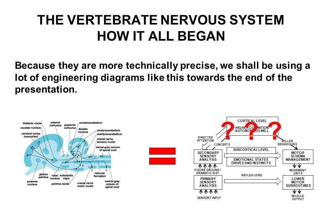 Because they are more technically precise, we shall be using a lot of engineering diagrams like this towards the end of the presentation.