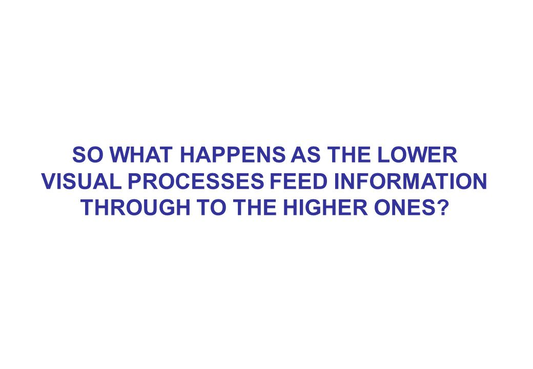 SO WHAT HAPPENS AS THE LOWER VISUAL PROCESSES FEED INFORMATION THROUGH TO THE HIGHER ONES?