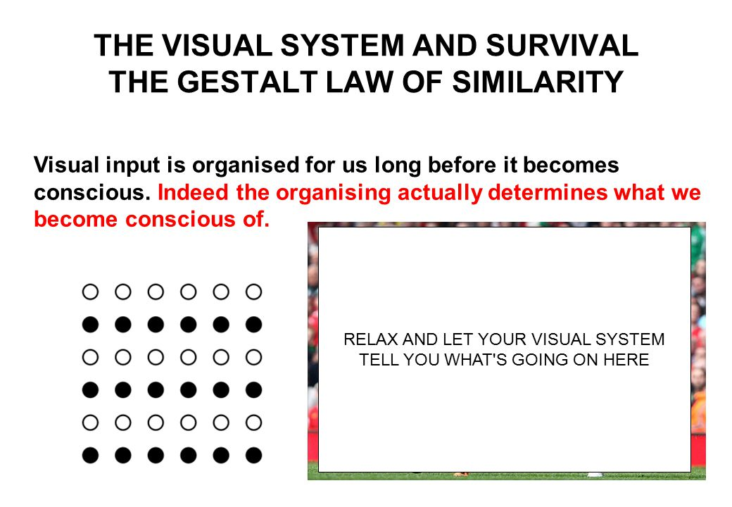 THE VISUAL SYSTEM AND SURVIVAL THE GESTALT LAW OF SIMILARITY Visual input is organised for us long before it becomes conscious.
