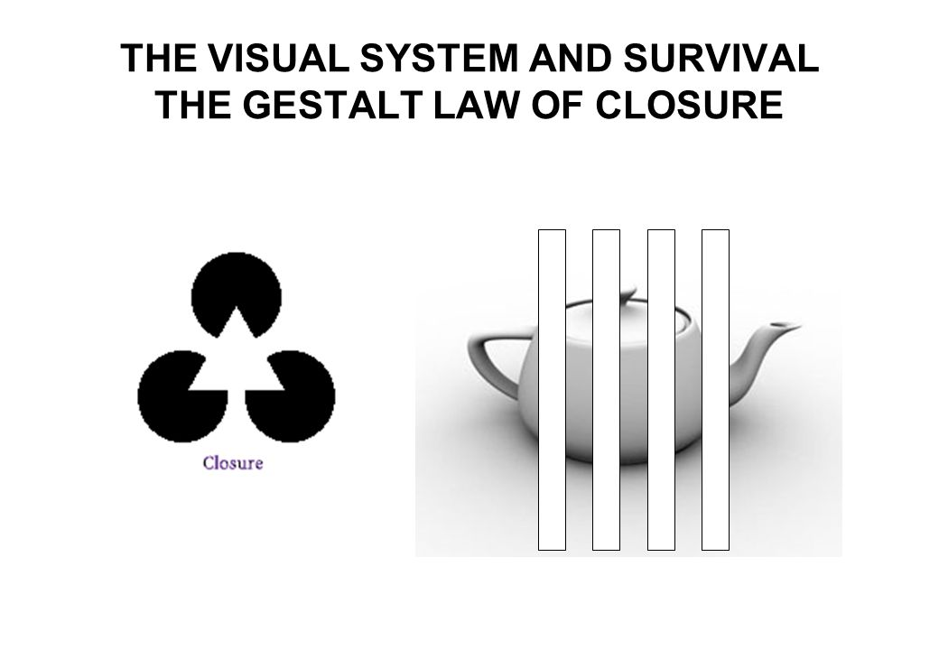 THE VISUAL SYSTEM AND SURVIVAL THE GESTALT LAW OF CLOSURE