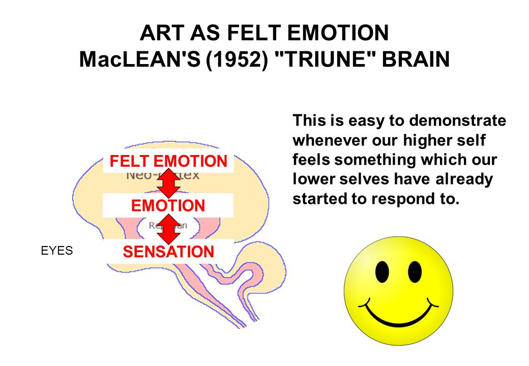 ART AS FELT EMOTION MacLEAN S (1952) TRIUNE BRAIN One of the reasons science does not yet understand art is that these three brain systems are responding to different things, and in different ways.