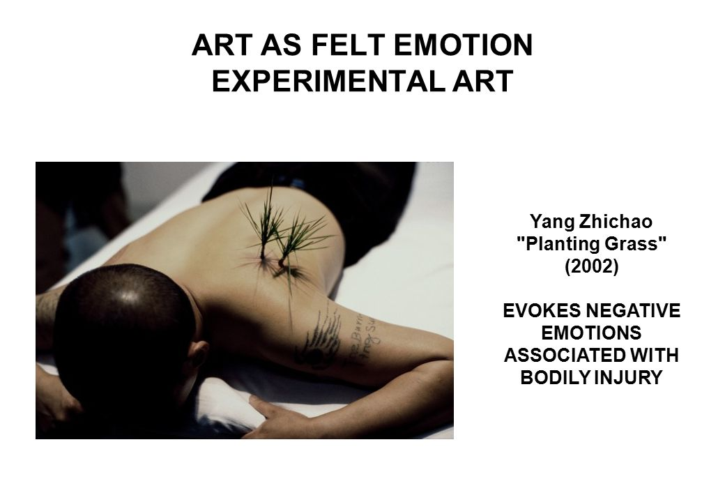 ART AS FELT EMOTION EXPERIMENTAL ART Yang Zhichao Planting Grass (2002) EVOKES NEGATIVE EMOTIONS ASSOCIATED WITH BODILY INJURY
