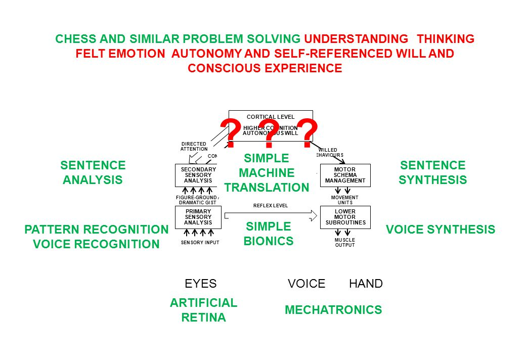 SECONDARY SENSORY ANALYSIS PRIMARY SENSORY ANALYSIS MOTOR SCHEMA MANAGEMENT LOWER MOTOR SUBROUTINES REFLEX LEVEL FIGURE-GROUND / DRAMATIC GIST SENSORY INPUT MOVEMENT UNITS MUSCLE OUTPUT DIRECTED ATTENTION WILLED BEHAVIOURS CONCEPTS SUBCORTICAL LEVEL EMOTIONAL STATES DRIVES AND INSTINCTS CORTICAL LEVEL HIGHER COGNITION AUTONOMOUS WILL ?.