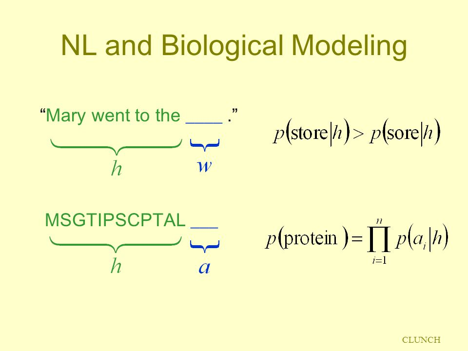 CLUNCH NL and Biological Modeling Mary went to the ____. MSGTIPSCPTAL ___