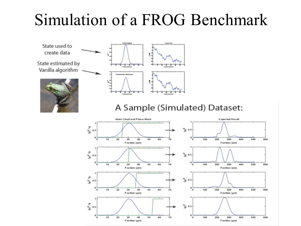 Simulation of a FROG Benchmark