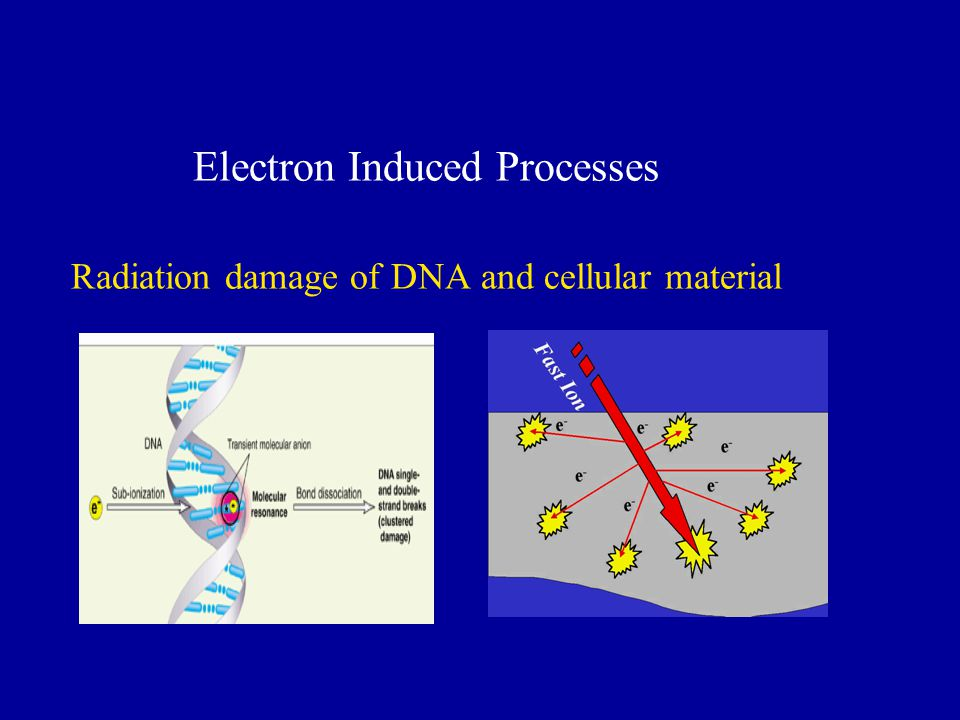 Electron Induced Processes Radiation damage of DNA and cellular material