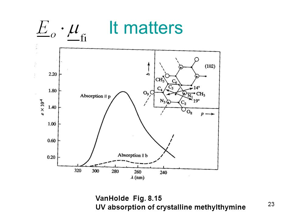 It matters VanHolde Fig. 8.15 UV absorption of crystalline methylthymine 23
