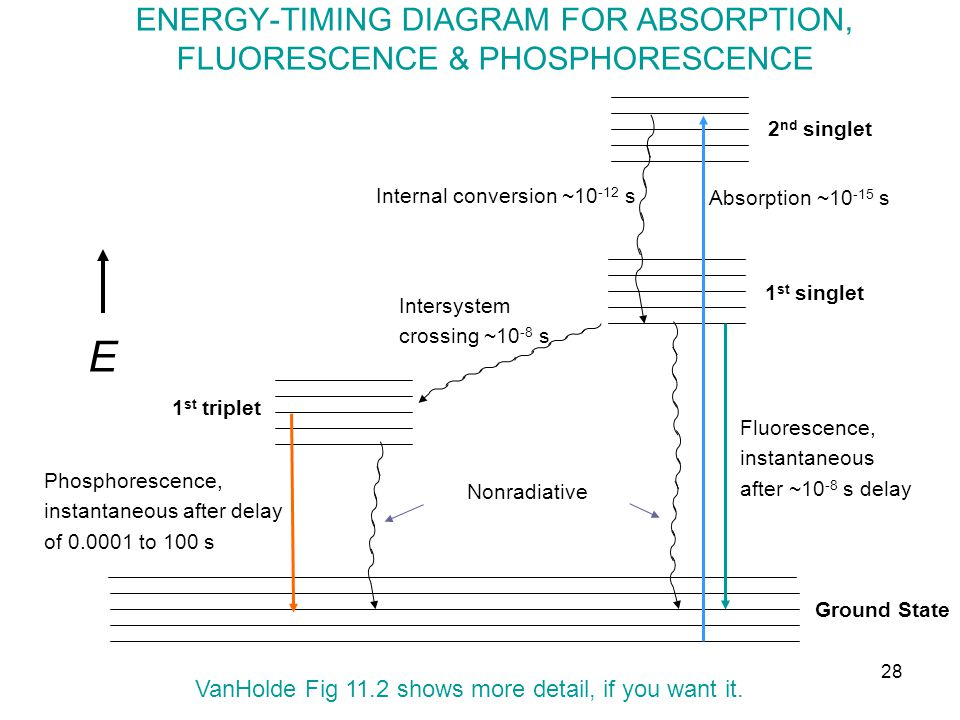 ENERGY-TIMING DIAGRAM FOR ABSORPTION, FLUORESCENCE & PHOSPHORESCENCE E Internal conversion ~10 -12 s Absorption ~10 -15 s 1 st triplet 1 st singlet 2 nd singlet Nonradiative Fluorescence, instantaneous after ~10 -8 s delay Intersystem crossing ~10 -8 s Phosphorescence, instantaneous after delay of 0.0001 to 100 s Ground State VanHolde Fig 11.2 shows more detail, if you want it.