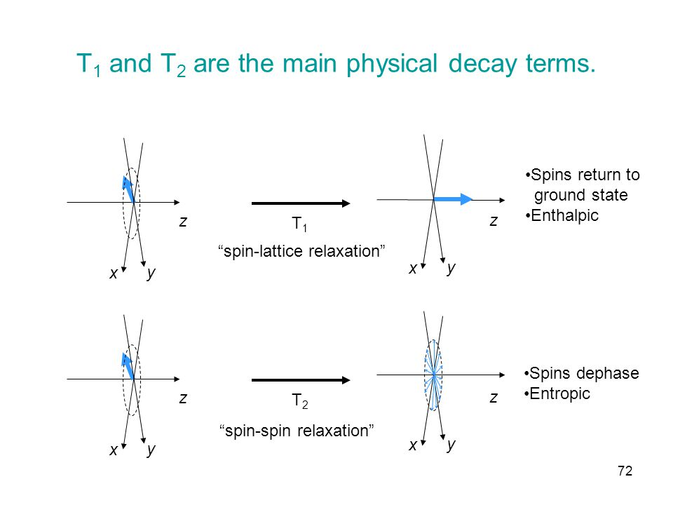 T 1 and T 2 are the main physical decay terms.
