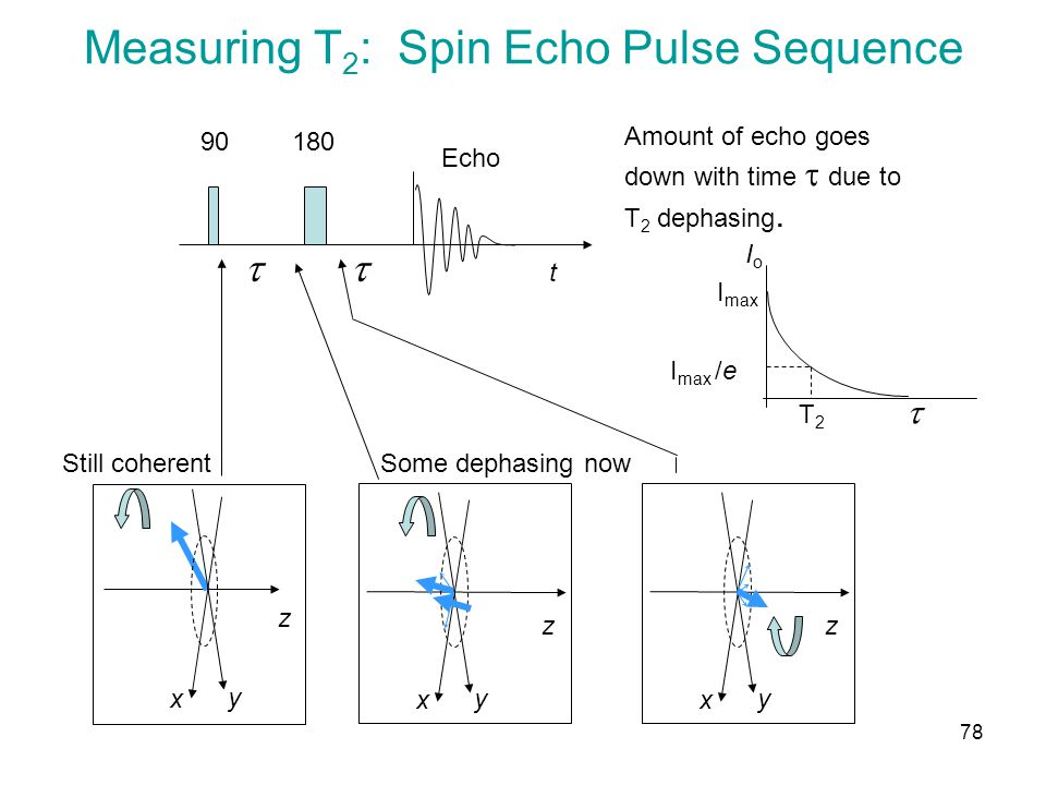 Measuring T 2 : Spin Echo Pulse Sequence t 18090  z x y Still coherent z x y Some dephasing now z x y Echo Amount of echo goes down with time  due to T 2 dephasing.
