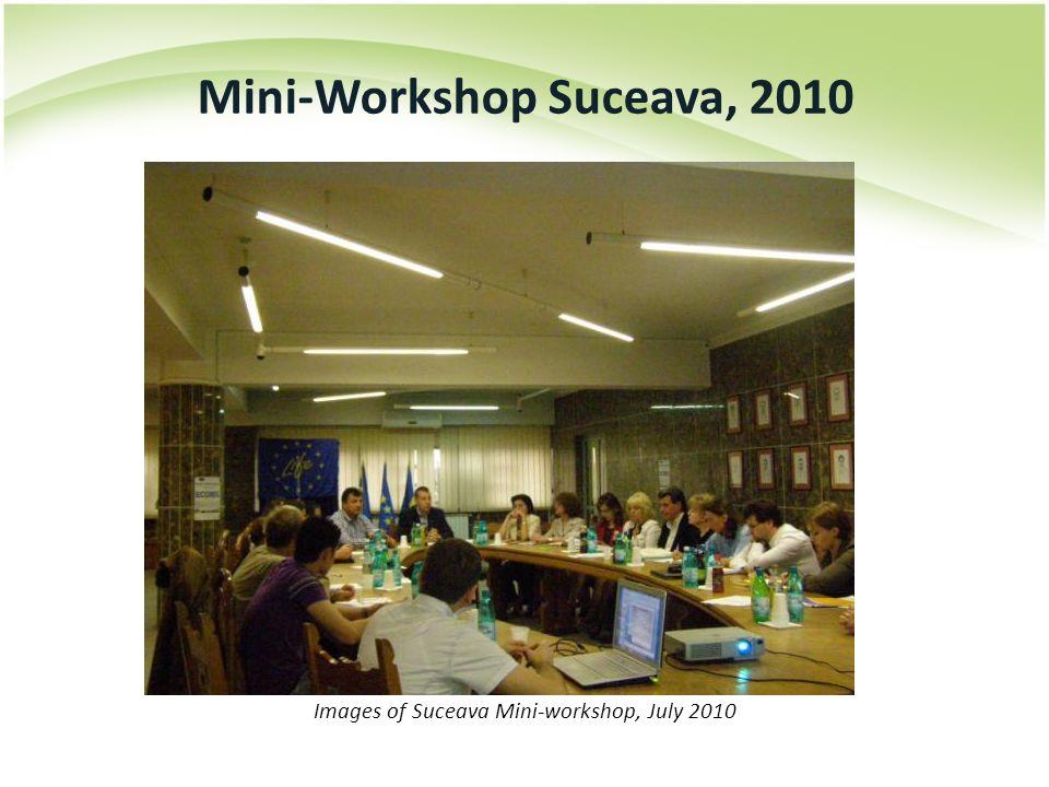 Images of Suceava Mini-workshop, July 2010 Mini-Workshop Suceava, 2010