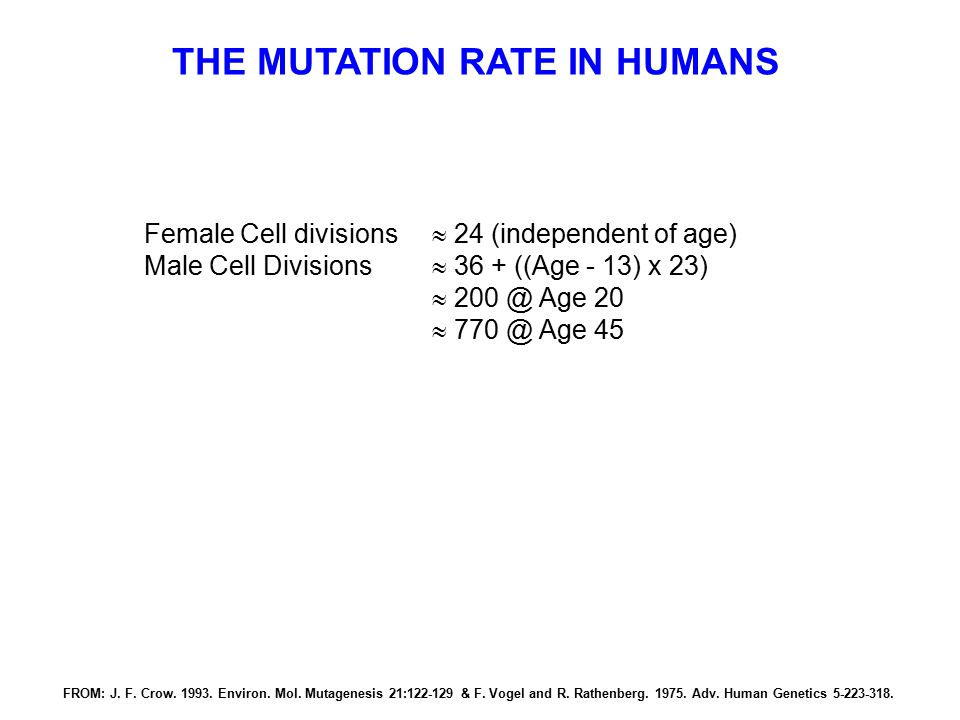 THE MUTATION RATE IN HUMANS Female Cell divisions  24 (independent of age) Male Cell Divisions  36 + ((Age - 13) x 23)  200 @ Age 20  770 @ Age 45