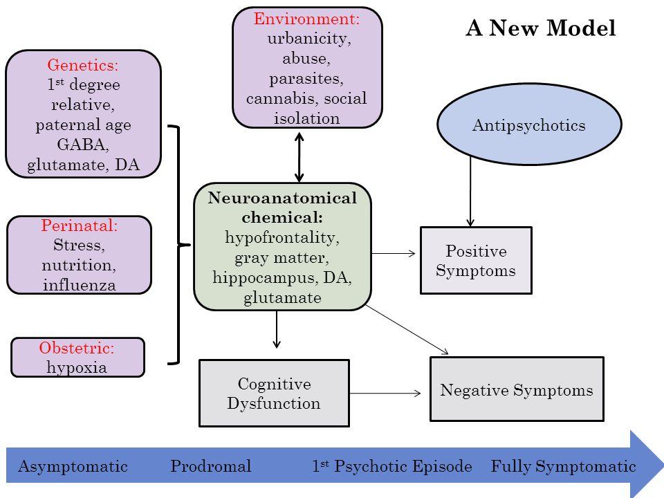 Genetics: 1 st degree relative, paternal age GABA, glutamate, DA Perinatal: Stress, nutrition, influenza Obstetric: hypoxia Environment: urbanicity, a