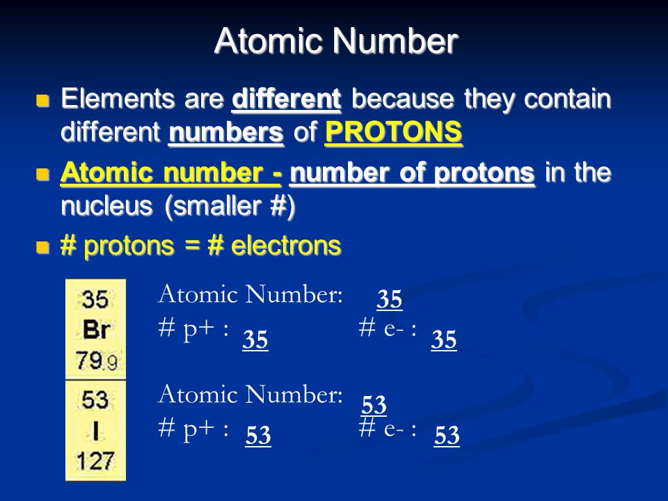Atomic Number Elements are different because they contain different numbers of PROTONS Elements are different because they contain different numbers o