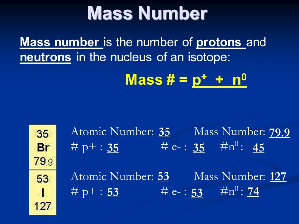Mass Number Mass number is the number of protons and neutrons in the nucleus of an isotope: Mass # = p + + n 0 Atomic Number: Mass Number: # p+ : # e-