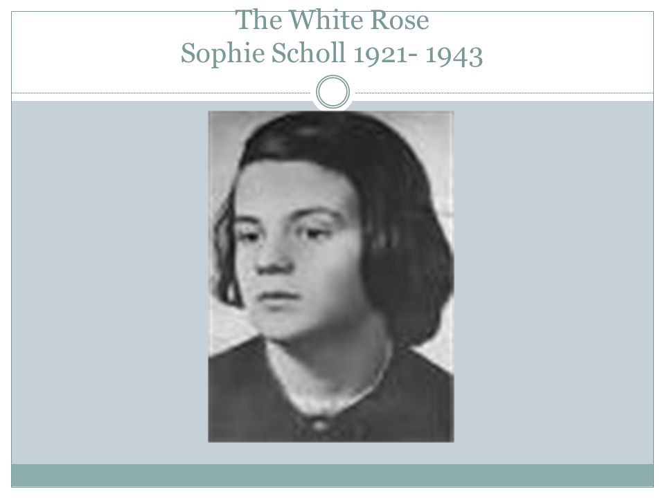 The White Rose Sophie Scholl 1921- 1943