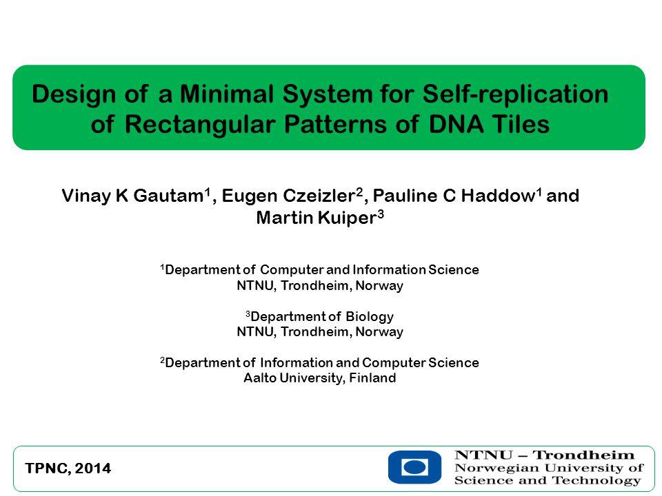 Design of a Minimal System for Self-replication of Rectangular Patterns of DNA Tiles Vinay K Gautam 1, Eugen Czeizler 2, Pauline C Haddow 1 and Martin