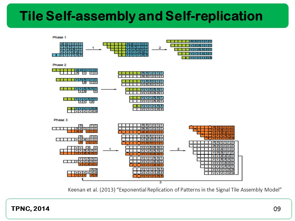 Tile Self-assembly and Self-replication TPNC, 2014 Keenan et al.