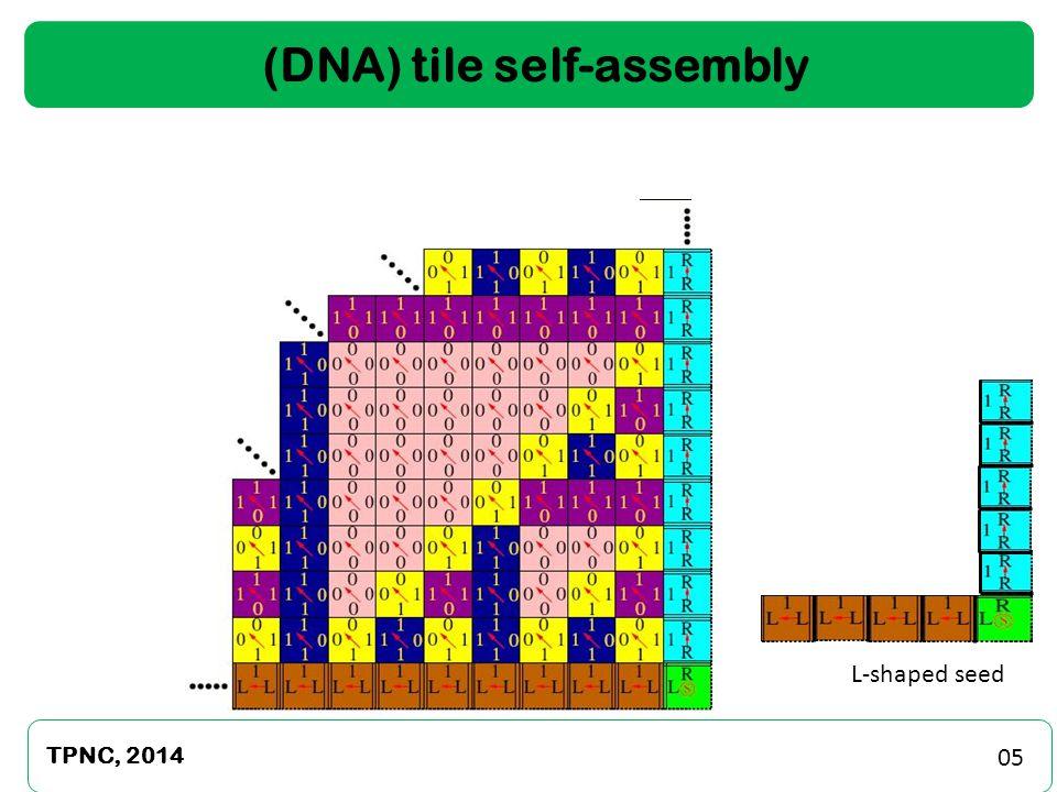 TPNC, 2014 16 Oregonator Chemical Oscillator Parameter Scan: ON-OFF Switching of SWET