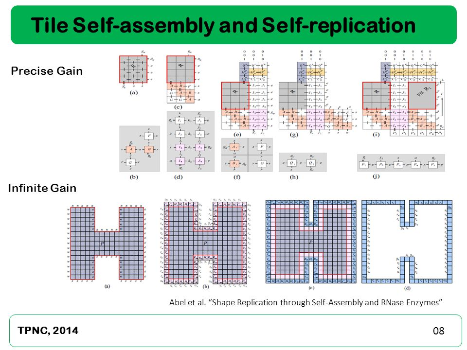Tile Self-assembly and Self-replication Precise Gain TPNC, 2014 Infinite Gain Abel et al.