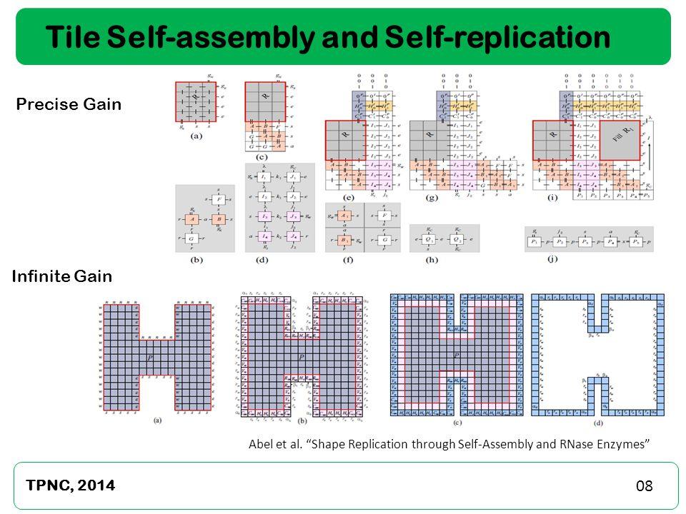 "Tile Self-assembly and Self-replication Precise Gain TPNC, 2014 Infinite Gain Abel et al. ""Shape Replication through Self-Assembly and RNase Enzymes"""