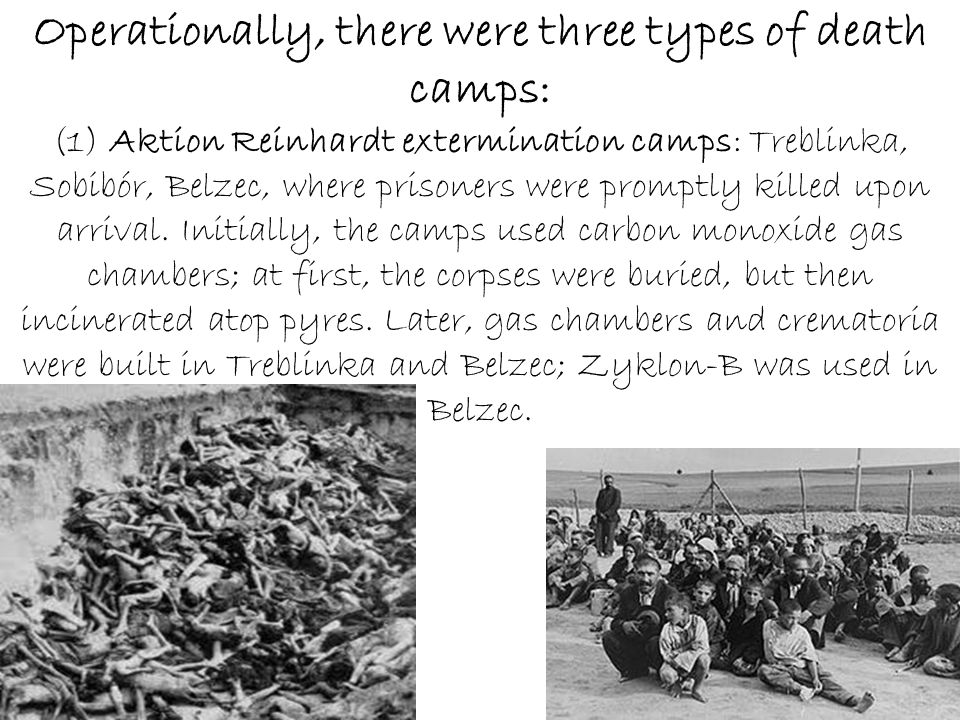 Operationally, there were three types of death camps: (1) Aktion Reinhardt extermination camps: Treblinka, Sobibór, Belzec, where prisoners were promptly killed upon arrival.