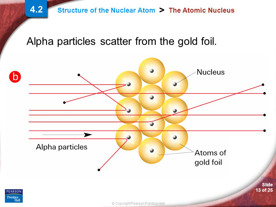 Slide 13 of 25 © Copyright Pearson Prentice Hall > Structure of the Nuclear Atom The Atomic Nucleus Alpha particles scatter from the gold foil.