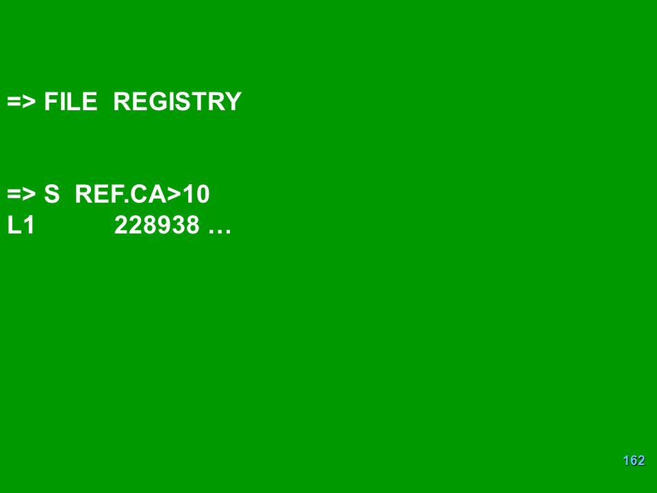 162 => FILE REGISTRY => S REF.CA>10 L1 228938 …