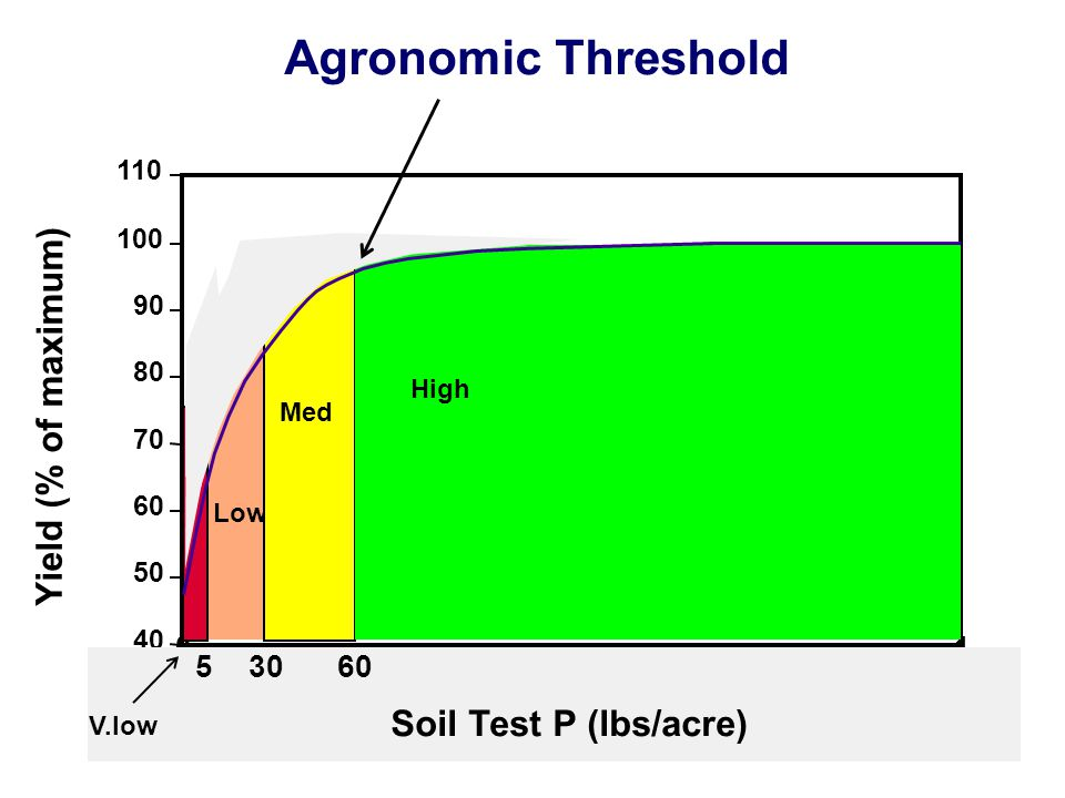 01 Soil Test P (lbs/acre) 40 50 60 70 80 90 100 110 Yield (% of maximum) 60305 Soil Test P (lbs/acre) Low Med High V.low Agronomic Threshold