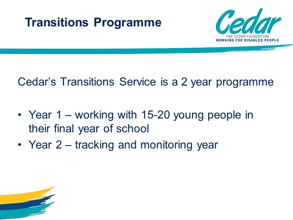 Transitions Programme Cedar's Transitions Service is a 2 year programme Year 1 – working with 15-20 young people in their final year of school Year 2 – tracking and monitoring year