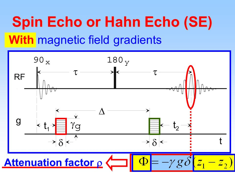 27 Spin Echo or Hahn Echo (SE) With magnetic field gradients Attenuation factor 